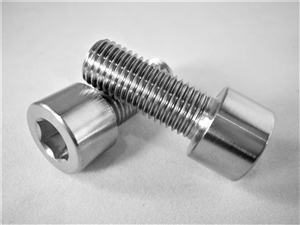 M10-1.25 x 25mm Parallel Socket Head Screw