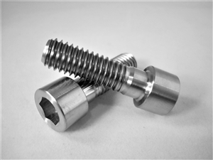 "3/8""-16 x 1-1/4"" Parallel Socket Head Screw"
