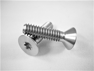 "1/4""-20 x 1""  Torx Countersunk Screw"